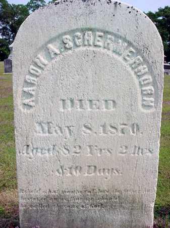 SCHERMERHORN, AARON A - Schenectady County, New York   AARON A SCHERMERHORN - New York Gravestone Photos