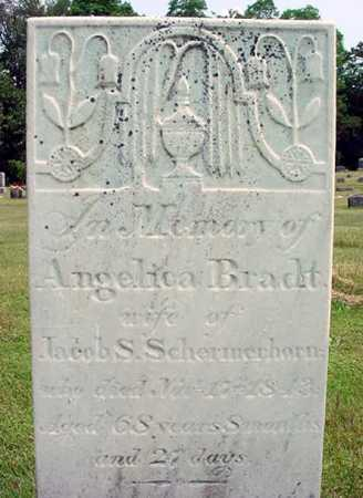 SCHERMERHORN, ANGELICA - Schenectady County, New York | ANGELICA SCHERMERHORN - New York Gravestone Photos