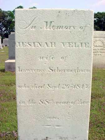 SCHERMERHORN, JESINAH - Schenectady County, New York   JESINAH SCHERMERHORN - New York Gravestone Photos