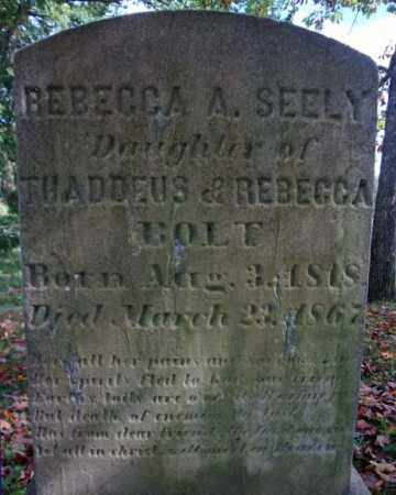 SEELY, REBECCA A - Schenectady County, New York | REBECCA A SEELY - New York Gravestone Photos