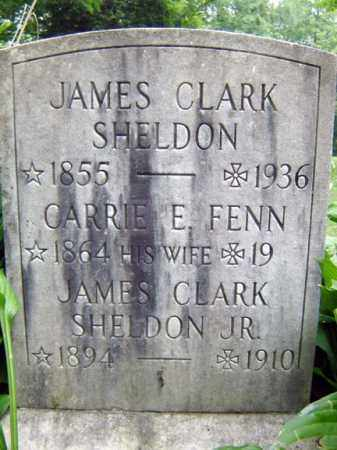 SHELDON, CARRIE E - Schenectady County, New York | CARRIE E SHELDON - New York Gravestone Photos
