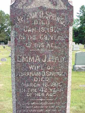SPRINGER, EMMA J - Schenectady County, New York | EMMA J SPRINGER - New York Gravestone Photos