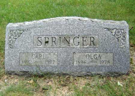 SPRINGER, OLGA - Schenectady County, New York | OLGA SPRINGER - New York Gravestone Photos