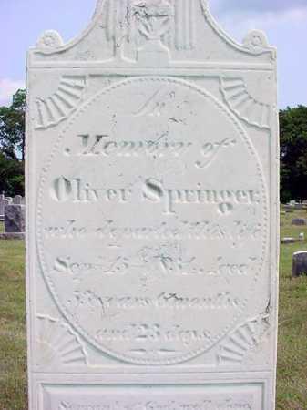 SPRINGER, OLIVER - Schenectady County, New York   OLIVER SPRINGER - New York Gravestone Photos