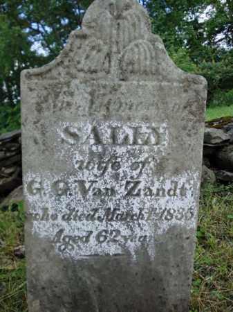 VAN ZANDT, SALLY - Schenectady County, New York   SALLY VAN ZANDT - New York Gravestone Photos