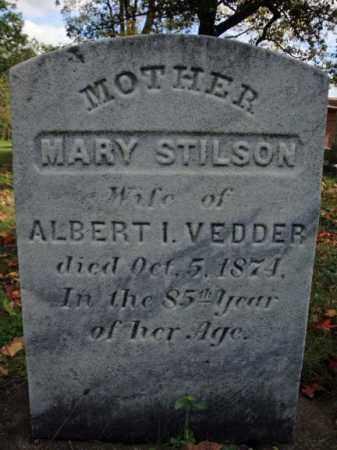 STILSON, MARY - Schenectady County, New York | MARY STILSON - New York Gravestone Photos