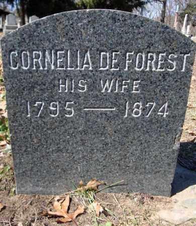 WHITE, CORNELIA - Schenectady County, New York | CORNELIA WHITE - New York Gravestone Photos