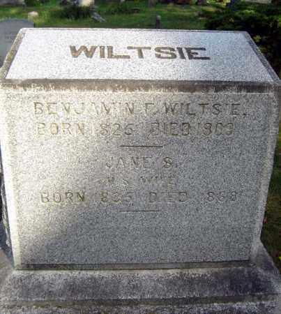 WILTSIE, JANE S - Schenectady County, New York | JANE S WILTSIE - New York Gravestone Photos