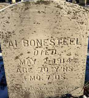 BONESTEEL, AL - Schoharie County, New York | AL BONESTEEL - New York Gravestone Photos