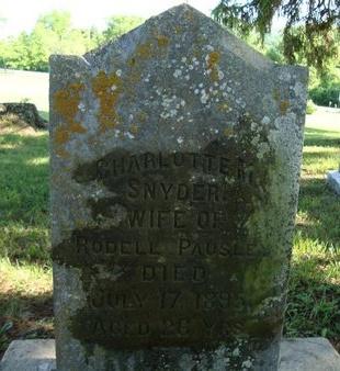 SNYDER, CHARLOTTE M - Schoharie County, New York | CHARLOTTE M SNYDER - New York Gravestone Photos