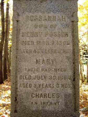 POSSON, MARY - Schoharie County, New York | MARY POSSON - New York Gravestone Photos