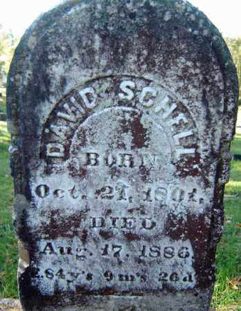 SCHELL, DAVID - Schoharie County, New York | DAVID SCHELL - New York Gravestone Photos
