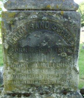 SCHELL, LEROY SAND - Schoharie County, New York | LEROY SAND SCHELL - New York Gravestone Photos