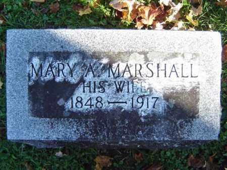SCHELL, MARY A - Schoharie County, New York | MARY A SCHELL - New York Gravestone Photos