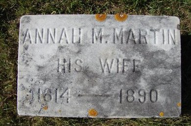 MARTIN WARNER, ANNAH M - Schoharie County, New York | ANNAH M MARTIN WARNER - New York Gravestone Photos