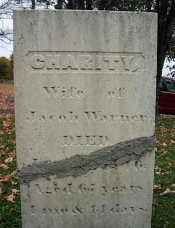 WARNER, CHARITY - Schoharie County, New York | CHARITY WARNER - New York Gravestone Photos