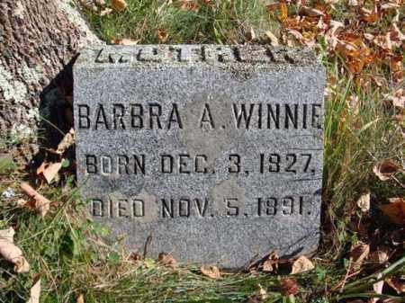 WINNIE, BARBRA A - Schoharie County, New York | BARBRA A WINNIE - New York Gravestone Photos
