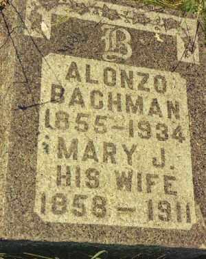 BACHMAN, ALONZO - Seneca County, New York | ALONZO BACHMAN - New York Gravestone Photos