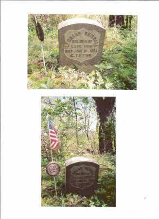 DRISCOLL, LEONARD - Seneca County, New York | LEONARD DRISCOLL - New York Gravestone Photos