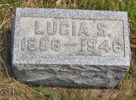 FRELIGH, LUCIA S. - Seneca County, New York | LUCIA S. FRELIGH - New York Gravestone Photos