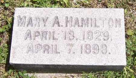 HAMILTON, MARY A. - Seneca County, New York   MARY A. HAMILTON - New York Gravestone Photos