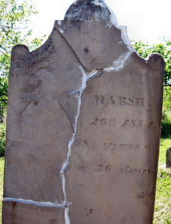 MARSH, THOMAS - Seneca County, New York | THOMAS MARSH - New York Gravestone Photos