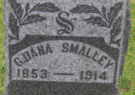 SMALLEY, G. DANA - Seneca County, New York   G. DANA SMALLEY - New York Gravestone Photos