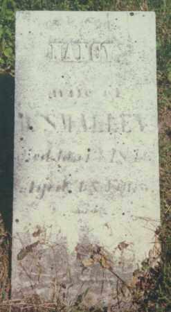 SMALLEY, NANCY - Seneca County, New York | NANCY SMALLEY - New York Gravestone Photos