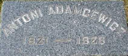 ADAMCEWICZ, ANTONI - Suffolk County, New York | ANTONI ADAMCEWICZ - New York Gravestone Photos