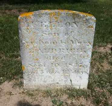 ALDRICH, LUELLON - Suffolk County, New York   LUELLON ALDRICH - New York Gravestone Photos
