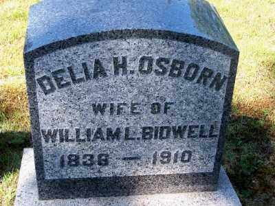 OSBORN, DELIA H - Suffolk County, New York | DELIA H OSBORN - New York Gravestone Photos