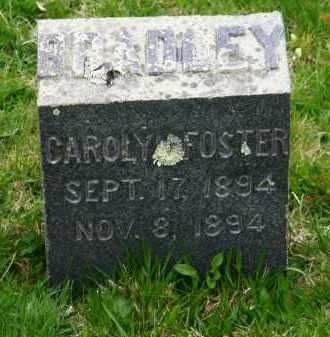 BRADLEY, CAROLYN - Suffolk County, New York | CAROLYN BRADLEY - New York Gravestone Photos