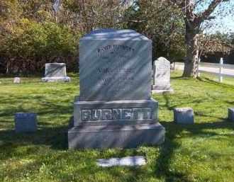 BURNETT, MARY ABIGAIL - Suffolk County, New York | MARY ABIGAIL BURNETT - New York Gravestone Photos