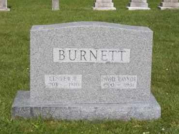 BURNETT, DAVID RAYNOR - Suffolk County, New York | DAVID RAYNOR BURNETT - New York Gravestone Photos