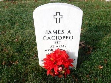 CACIOPPO, JAMES A - Suffolk County, New York   JAMES A CACIOPPO - New York Gravestone Photos
