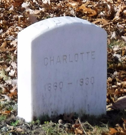CADY, CHARLOTTE - Suffolk County, New York | CHARLOTTE CADY - New York Gravestone Photos