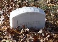 CADY, HARRIETTE - Suffolk County, New York   HARRIETTE CADY - New York Gravestone Photos