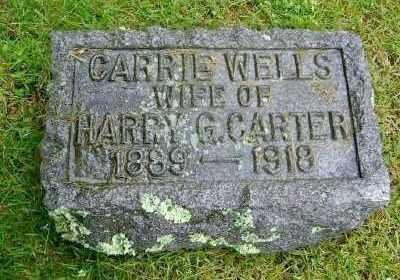 WELLS CARTER, CARRIE - Suffolk County, New York | CARRIE WELLS CARTER - New York Gravestone Photos