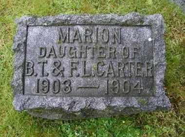 CARTER, MARION - Suffolk County, New York | MARION CARTER - New York Gravestone Photos
