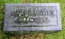 CARTER, MARY A - Suffolk County, New York | MARY A CARTER - New York Gravestone Photos
