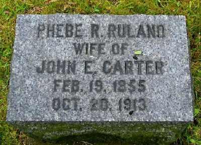 CARTER, PHEBE R - Suffolk County, New York   PHEBE R CARTER - New York Gravestone Photos