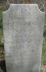 COMBS, MELLISCENT - Suffolk County, New York | MELLISCENT COMBS - New York Gravestone Photos