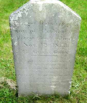 COOK, GEORGE WASHINGTON - Suffolk County, New York | GEORGE WASHINGTON COOK - New York Gravestone Photos