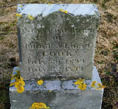 COOK, INFANT DAUGHTER - Suffolk County, New York | INFANT DAUGHTER COOK - New York Gravestone Photos