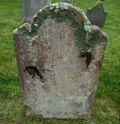 COOK, POLLY - Suffolk County, New York | POLLY COOK - New York Gravestone Photos