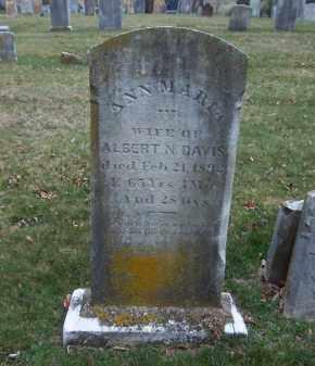 DAVIS, ANN MARIA - Suffolk County, New York | ANN MARIA DAVIS - New York Gravestone Photos