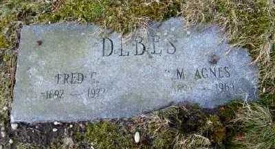 DEBES, M. AGNES - Suffolk County, New York | M. AGNES DEBES - New York Gravestone Photos