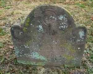 DOWNS, PENELOPE - Suffolk County, New York | PENELOPE DOWNS - New York Gravestone Photos