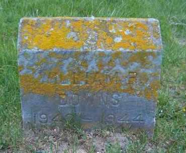 DOWNS, WILLIAM R. - Suffolk County, New York | WILLIAM R. DOWNS - New York Gravestone Photos