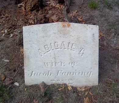 FANNING, ABIGAIL T - Suffolk County, New York | ABIGAIL T FANNING - New York Gravestone Photos